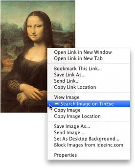 TinEye add-ons for Firefox, Opera, Safari, Chrome & IE browsers