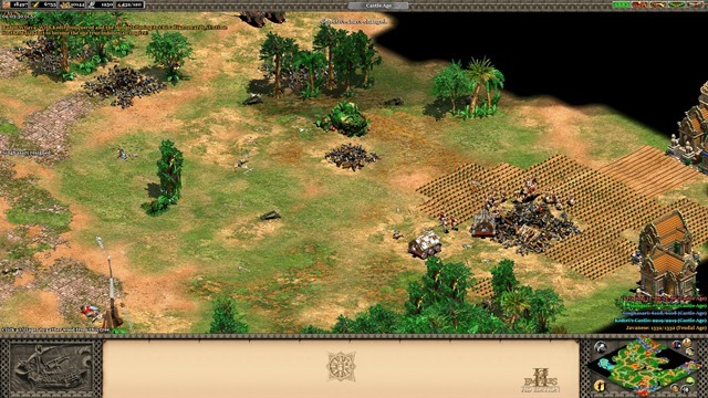 Age of Empires II HD Rise of the Rajas Review 3
