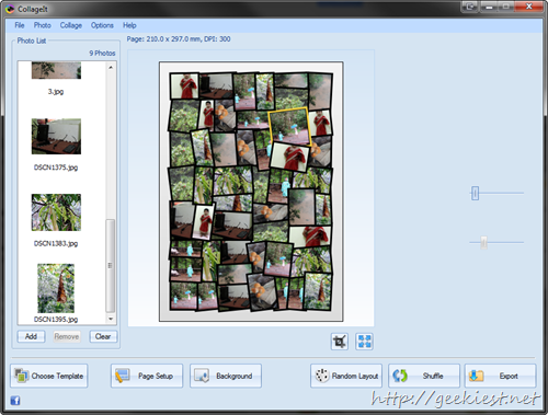 Giveaway - CollageIt for Windows and Mac