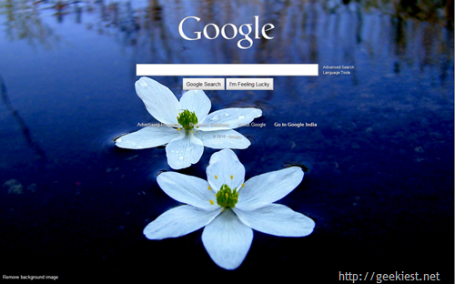 Google background changed