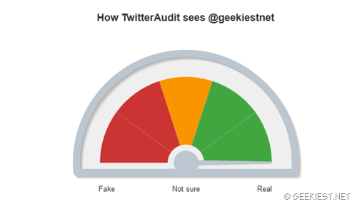 How twitter audit sees