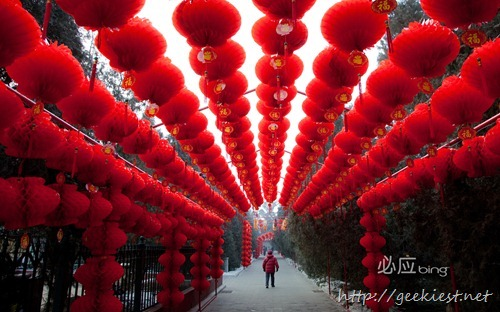 中国春节 (Chinese New Year)