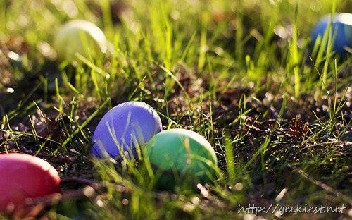 Colored eggs left in the grass
