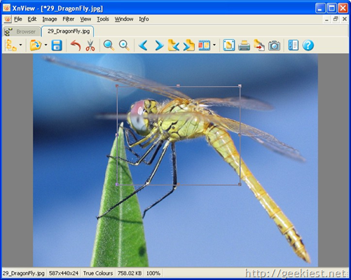 Free Image viewers for Windows - XnView