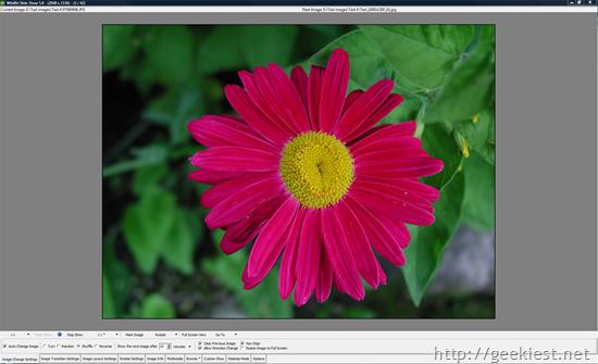 Free Image viewers for Windows - WildBit Viewer
